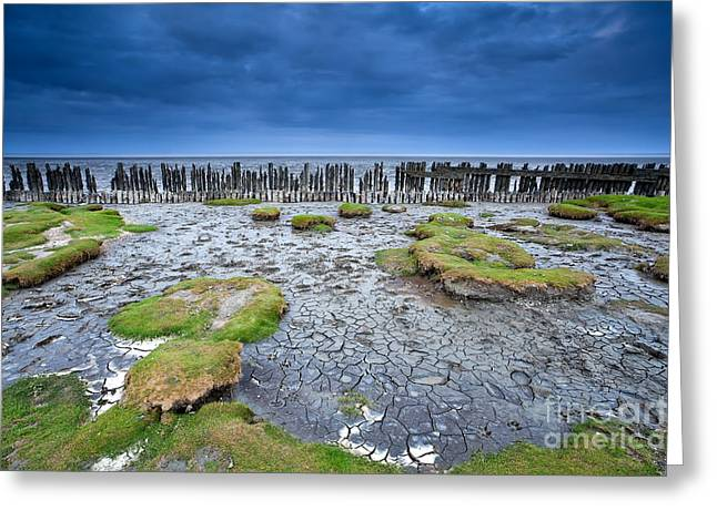 North Sea Greeting Cards - Low tide Greeting Card by Olha Rohulya