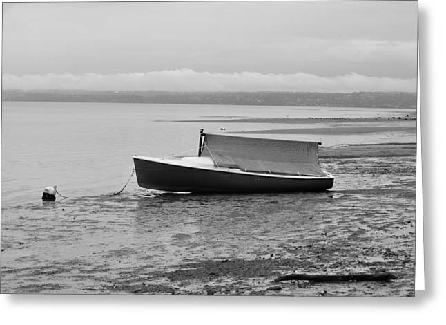 Puget Sound Framed Prints Greeting Cards - Low Tide Greeting Card by Paulina Roybal