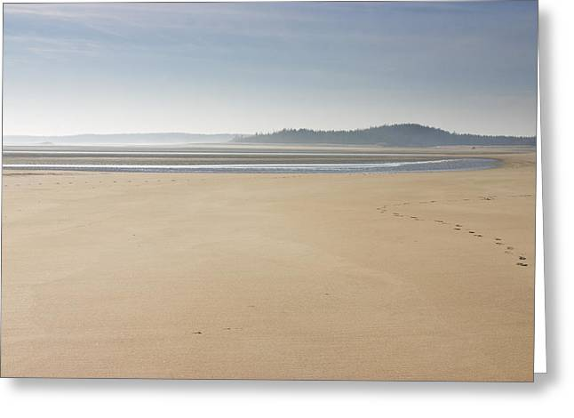 Maine Landscape Greeting Cards - Low Tide Popham Beach State Park Maine Greeting Card by Keith Webber Jr
