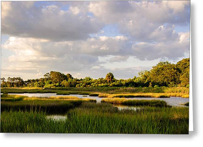 Steve Dupree Greeting Cards - Lowcountry Heaven Greeting Card by Steve DuPree