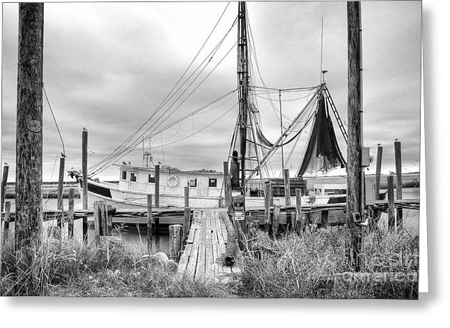 Shrimp Boat Greeting Cards - Lowcountry Shrimp Boat Greeting Card by Scott Hansen