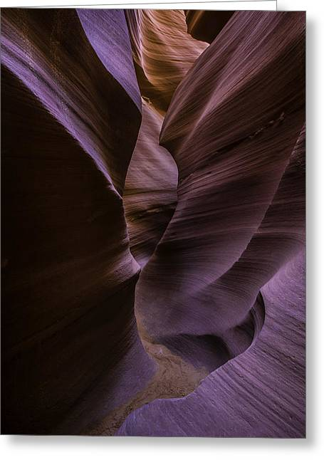Horse Shoe Greeting Cards - Lower Antelope Canyon Greeting Card by Larry Marshall