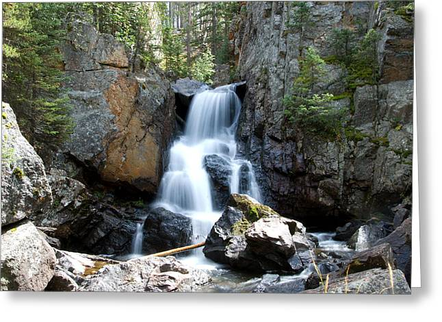 Stefan Carpenter Greeting Cards - Lower Cascade Falls Greeting Card by Stefan Carpenter