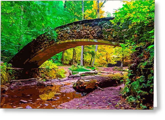Beautiful Scenery Greeting Cards - Lower Falls Bridge 2 Greeting Card by Brian Stevens