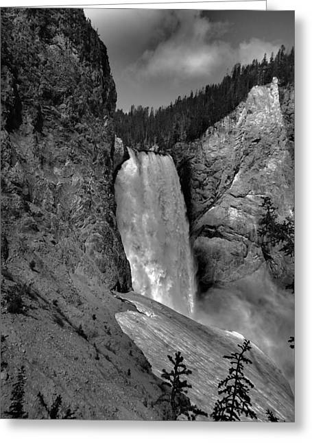 Uncle Tom Greeting Cards - Lower Falls In Yellowstone In Black And White Greeting Card by Dan Sproul