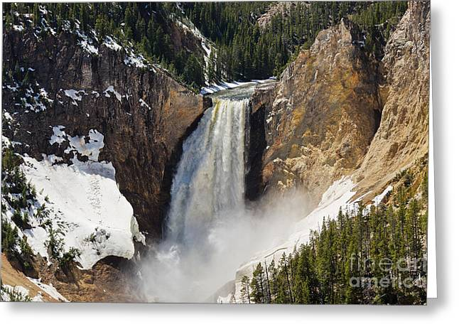 Sue Smith Greeting Cards - Lower Falls of the Yellowstone Greeting Card by Sue Smith
