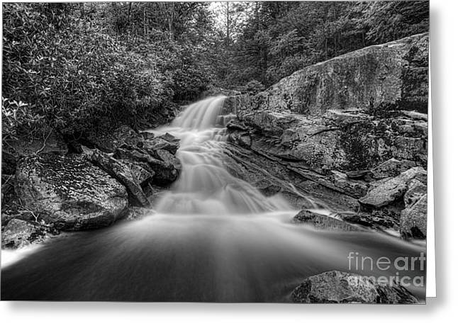 Lower Falls On Big Run River  Greeting Card by Dan Friend