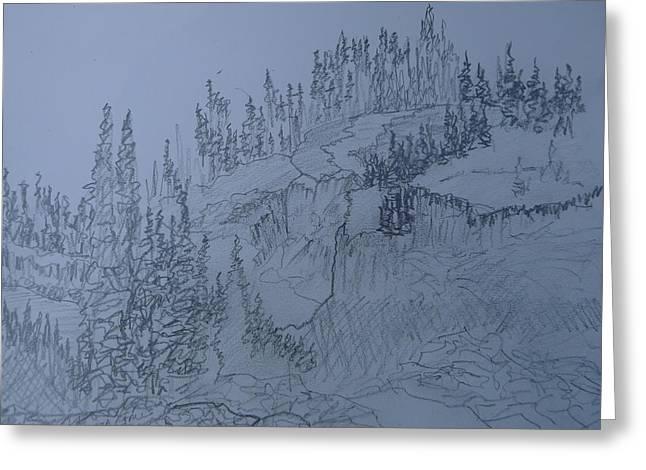 Capsule Drawings Greeting Cards - Lower Mesa Falls Greeting Card by Joel Deutsch