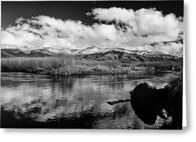 River. Clouds Greeting Cards - Lower Owens River Greeting Card by Cat Connor