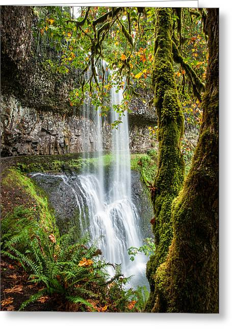 Silver Falls State Park Greeting Cards - Lower South Falls Greeting Card by Brian Bonham