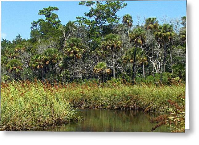 Chiefland Greeting Cards - Lower Suwannee Refuge 2A Greeting Card by Sheri McLeroy