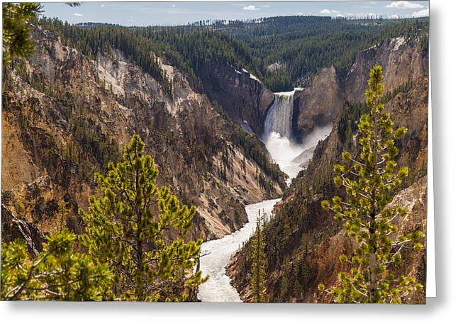Grand Canyon Of The Yellowstone Greeting Cards - Lower Yellowstone Canyon Falls 5 - Yellowstone National Park Wyoming Greeting Card by Brian Harig