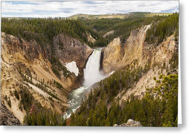 White River Scene Greeting Cards - Lower Yellowstone Canyon Falls Greeting Card by Brian Harig