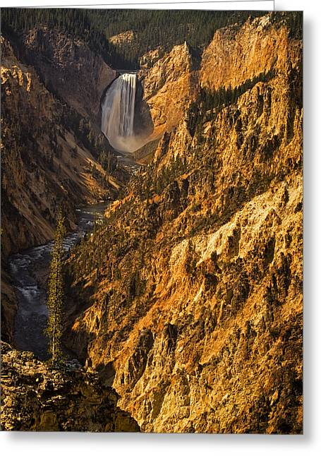 Grand Canyon Of The Yellowstone Greeting Cards - Lower Yellowstone Falls Greeting Card by Andrew Soundarajan