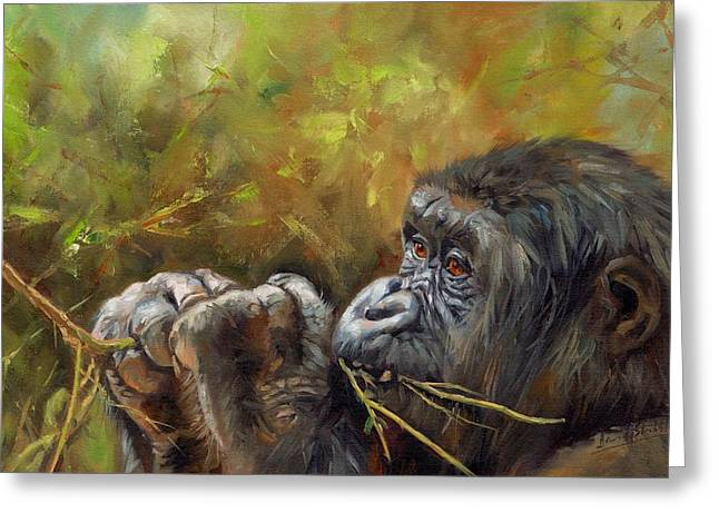 Ape Greeting Cards - Lowland Gorilla 2 Greeting Card by David Stribbling