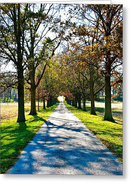 Country Lanes Digital Art Greeting Cards - Lowrys Lane Greeting Card by Betty Smithhart