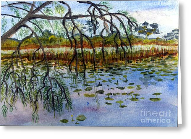 Wildlife Refuge. Paintings Greeting Cards - Loxahatchee Water Lily Pond Greeting Card by Donna Walsh