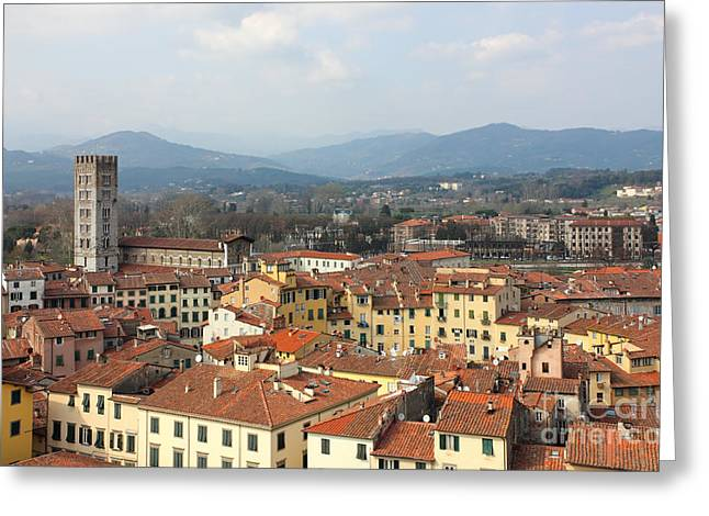Small Town Scene Greeting Cards - Lucca Aerial panoramic view with Piazza dell Anfiteatro Greeting Card by Kiril Stanchev