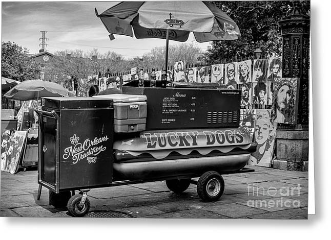 Lucky Dogs Greeting Cards - Lucky Dogs in Jackson Square NOLA BW Greeting Card by Kathleen K Parker