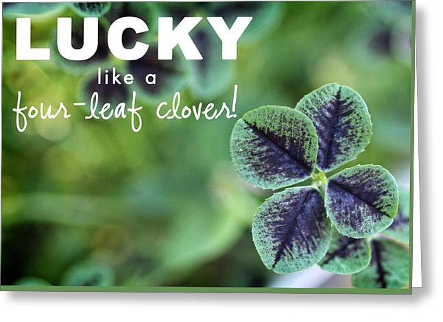 Lucky Like A Clover Greeting Card by Nancy Ingersoll