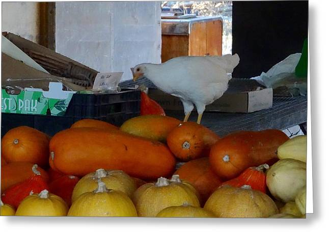 Farm Stand Greeting Cards - One Lucky Chicken Greeting Card by Sharon Madison