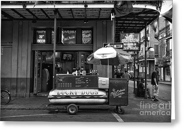 Lucky Dogs Photographs Greeting Cards - Lucky on Bourbon Street mono Greeting Card by John Rizzuto