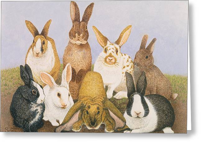 Lucky Rabbits Greeting Card by Pat Scott
