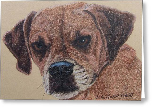 Puggle Greeting Cards - Lucy-Puggle Commission Greeting Card by Anita Putman