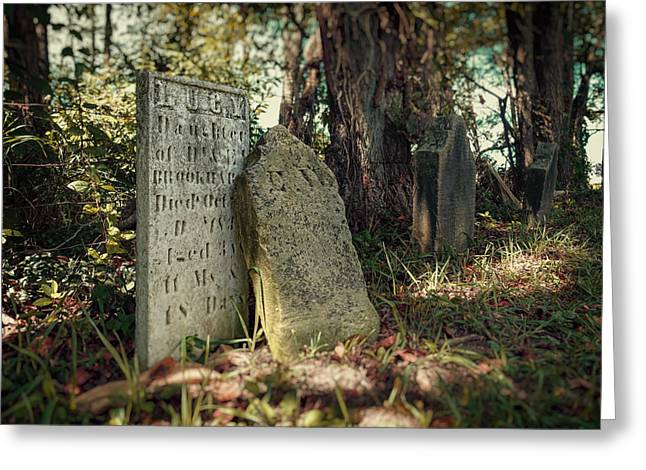 Gravesite Greeting Cards - Lucy Greeting Card by Tom Mc Nemar