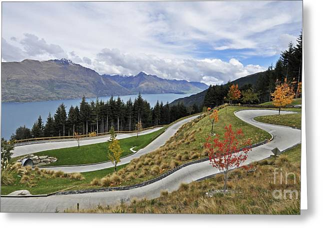 Go Cart Greeting Cards - Luge track Greeting Card by Judith Katz