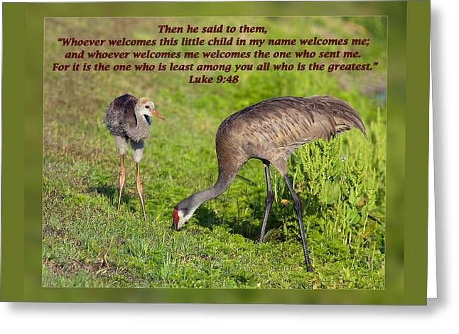 Inspirational Wildlife Prints Greeting Cards - Luke 9 48 Greeting Card by Dawn Currie