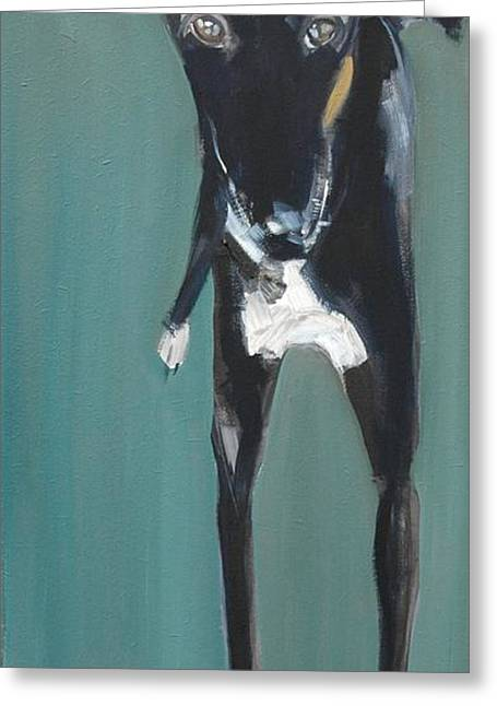Greyhound Greeting Cards - Lula, 2009 Oil On Board Greeting Card by Sally Muir