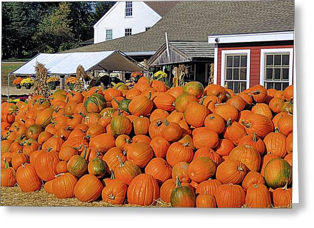 Farmstand Greeting Cards - Lull Farm Hollis New Hampshire Greeting Card by Janice Drew