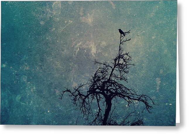 Haunted Forest Greeting Cards - Lullaby Greeting Card by Danny Van den Groenendael