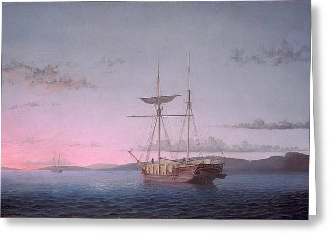 Schooner Paintings Greeting Cards - Lumber Schooners at Evening on Penobscot Bay Greeting Card by Fitz Henry Lane
