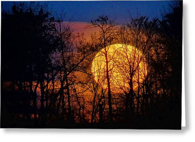 Luna Greeting Cards - Luminescence Greeting Card by Bill Pevlor