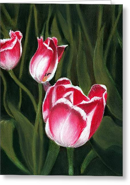 Canada Pastels Greeting Cards - Luminous Greeting Card by Anastasiya Malakhova