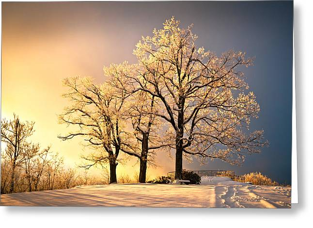 Footprint Greeting Cards - Luminous - Blue Ridge Winter Sunset Greeting Card by Dave Allen