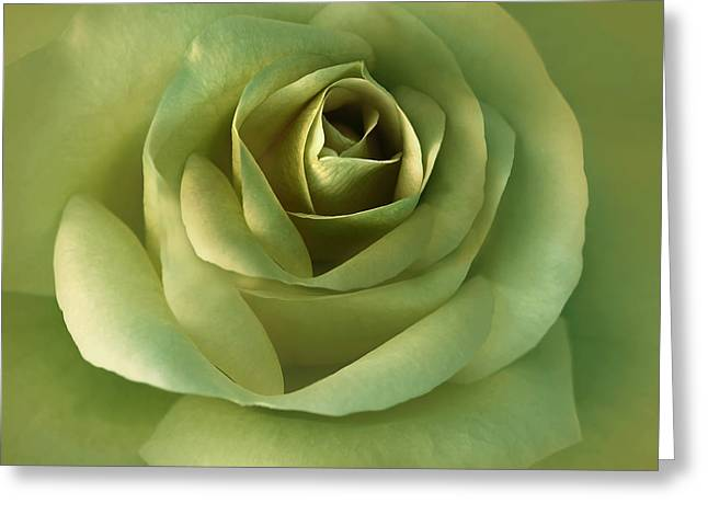Olive Green Greeting Cards - Luminous Green Rose Flower Greeting Card by Jennie Marie Schell