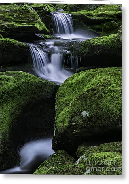 Connecticut Scenery Greeting Cards - Luminous Triple Falls - Tunxis State forest   Greeting Card by Thomas Schoeller