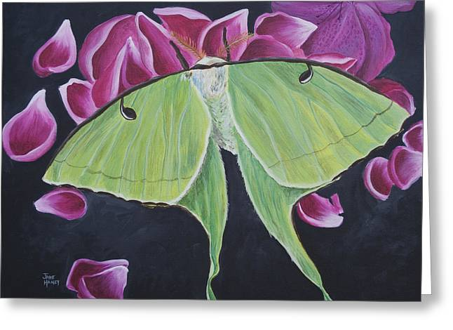 Indiana Flowers Paintings Greeting Cards - Luna Moth Greeting Card by Jaime Haney