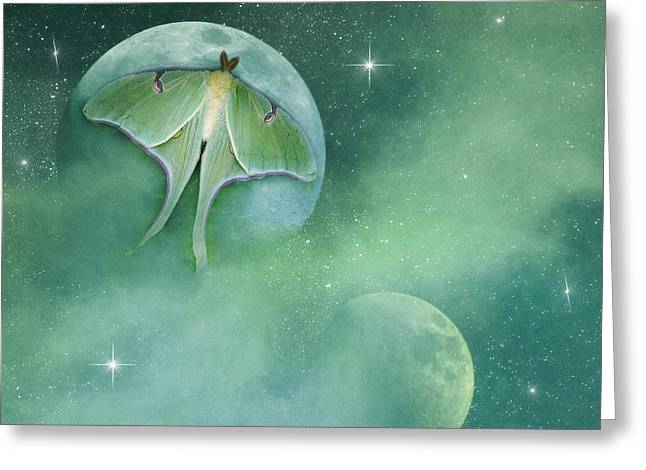 Digipho333 Studio Greeting Cards - Luna See Greeting Card by Shannon Story