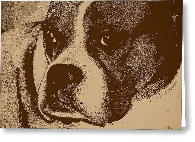 Working Dog Digital Greeting Cards - Luna the Boxer  Greeting Card by John Knapko