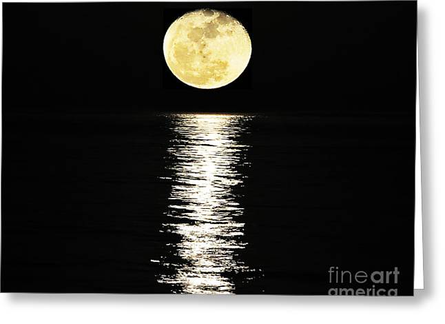 Myrtle Beach Ocean Photography Greeting Cards - Lunar Lane 03 Greeting Card by Al Powell Photography USA