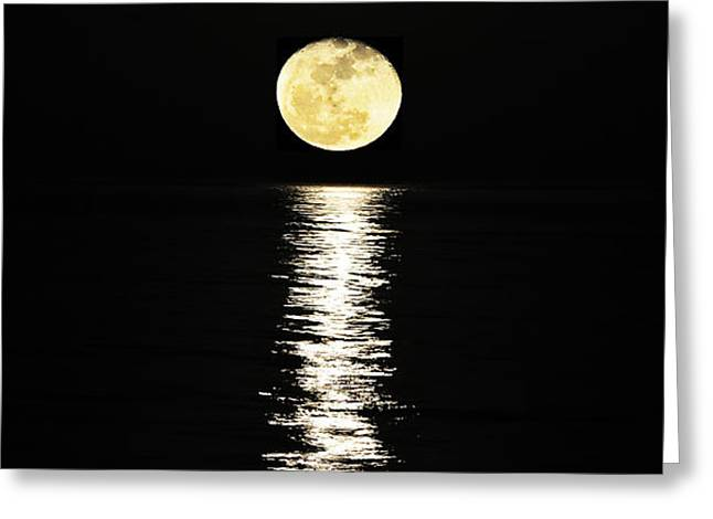 Reflecting Water Greeting Cards - Lunar Lane Greeting Card by Al Powell Photography USA