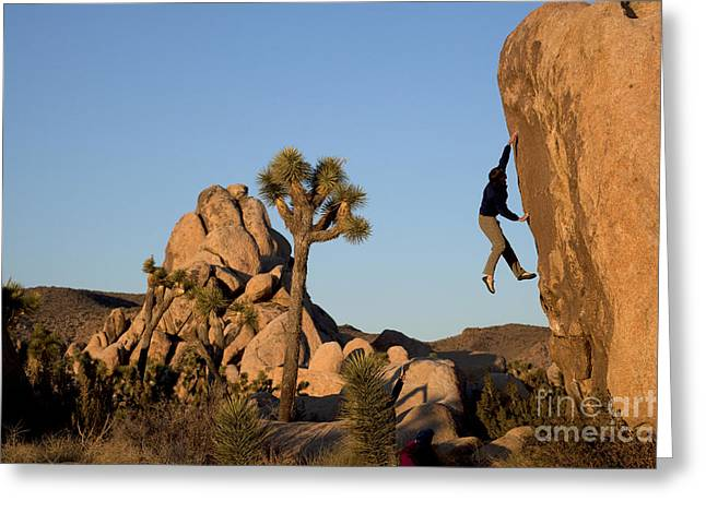 Take A Chance Greeting Cards - Lunge For The Sky Greeting Card by Robert  Miramontes