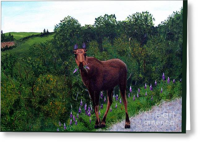 Eating Lupines Greeting Cards - Lupine Loving Moose Greeting Card by Barbara Griffin