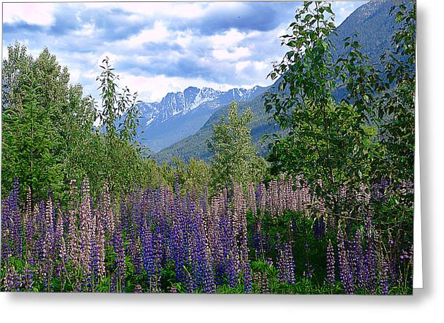 Pastoral Mixed Media Greeting Cards - Lupines and Mountains Greeting Card by Janet Ashworth