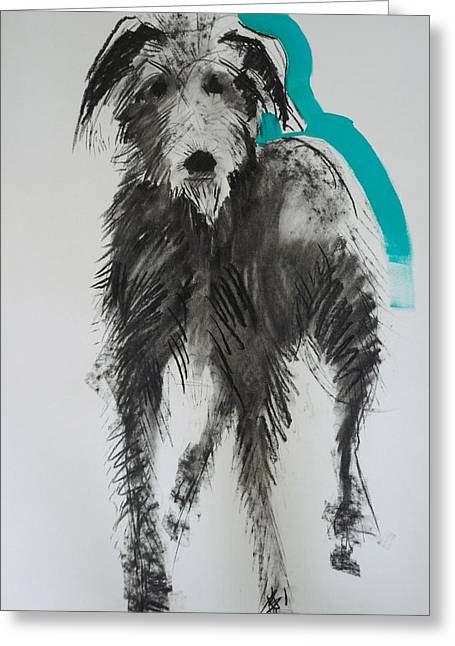 Cross Breed Greeting Cards - Lurcher, 2012 Charcoal And Oil On Paper Greeting Card by Sally Muir