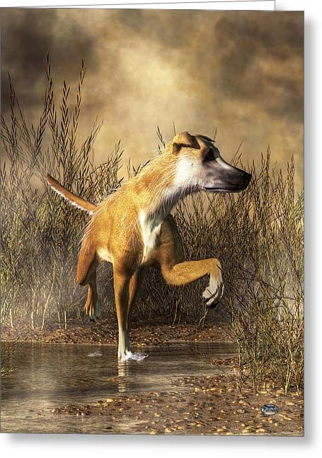 Lurcher Greeting Card by Daniel Eskridge